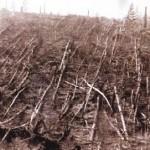Meteoritul din Tunguska – Fenomenul ce ar fi putut distruge complet viata pe Pamant