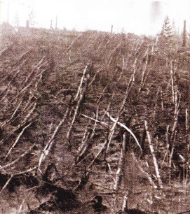 Meteoritul din Tunguska - Fenomenul ce ar fi putut distruge complet viata pe Pamant