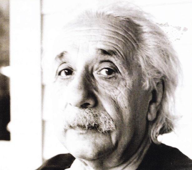 Einstein la batranete