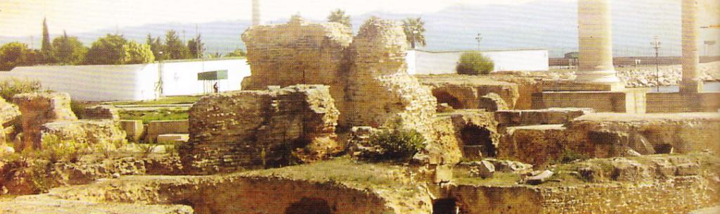 Ruinele Cartaginei
