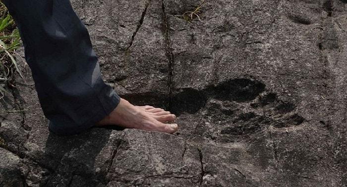 Urma de Bigfoot fata de piciorul uman