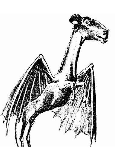 Diavolul din Jersey - Legenda, farsa sau ceva mai mult?