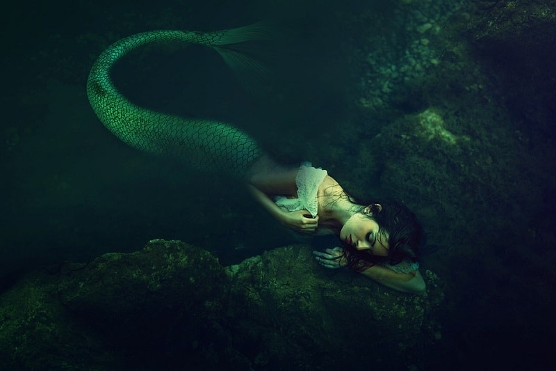 Sirena dormind
