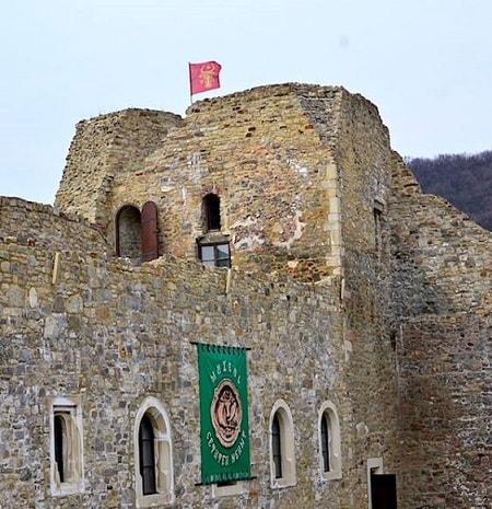 Cetatea Neamtului - Aparitie si Istorie