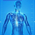 Corpul Uman – Ce nu stiti despre organismul vostru
