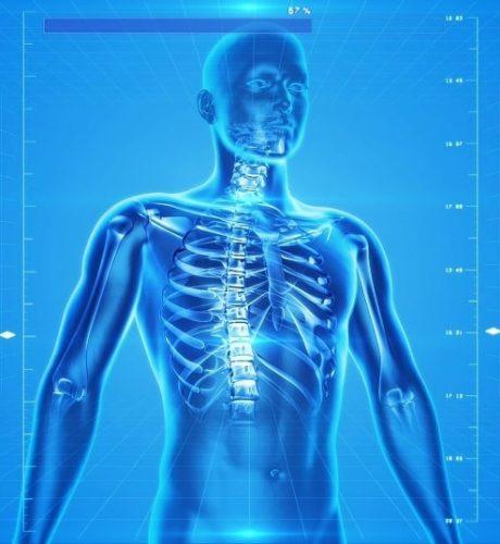 Corpul Uman - Ce nu stiti despre organismul vostru