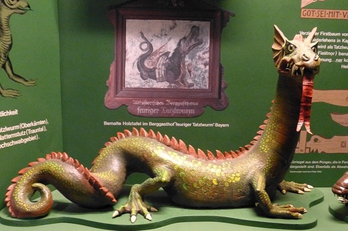 Tatzelwurrn in Muzeul Naturii din Salzburg