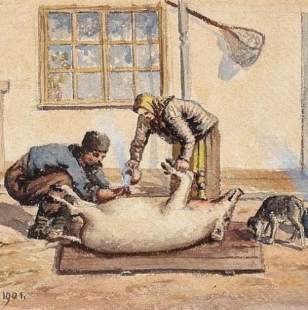 Ignatul Porcilor - Credinte si Superstitii despre Taierea Porcului
