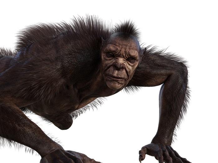 Om-lup in timpul transformarii