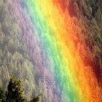 Totul despre culorile curcubeului