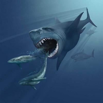 Megalodonul - Monstrul suprem - Mituri si realitate