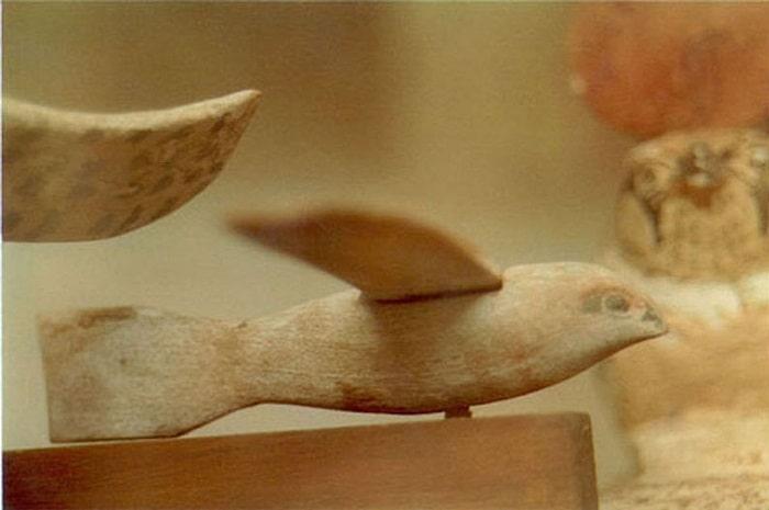 Soimul de lemn - poza din alt  unghi