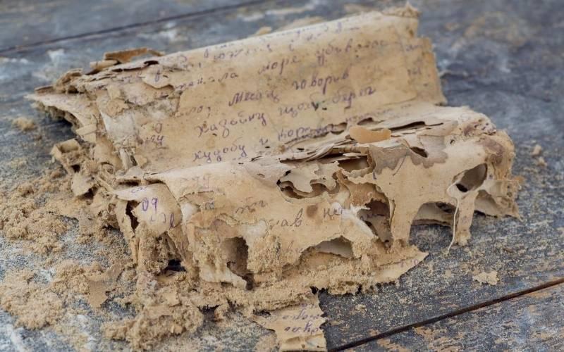 papirus cu o limba necunoscuta