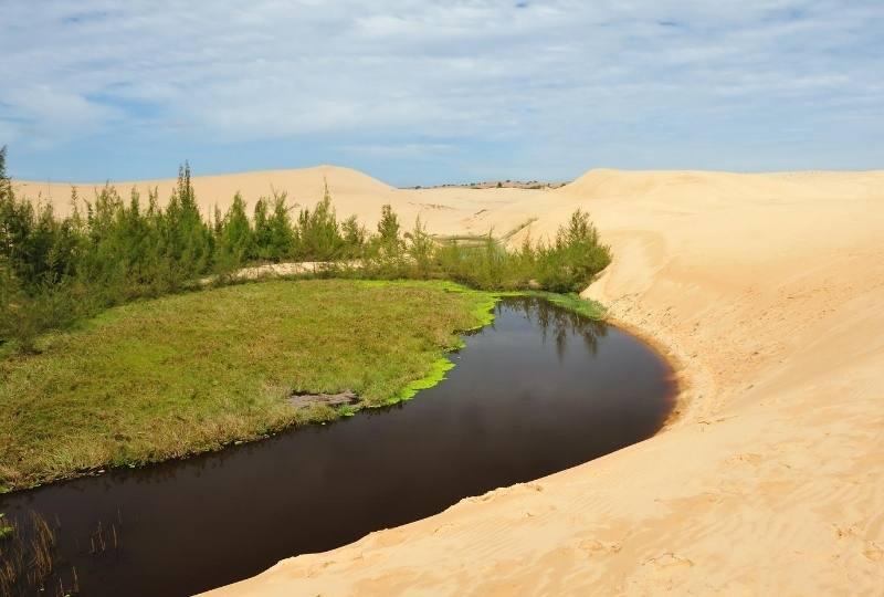 Sahara o parte inverzita