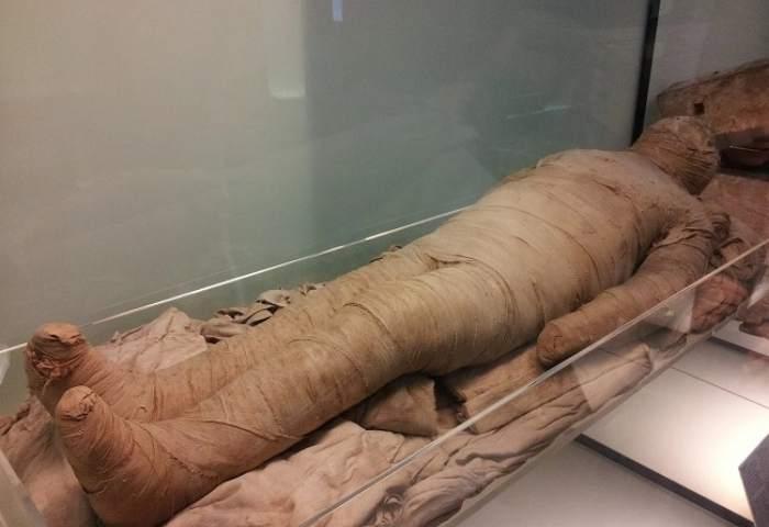 Mumie egipteană
