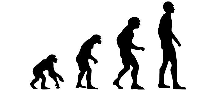 Teoria lui Darwin ca omul s-ar trage din maimuta