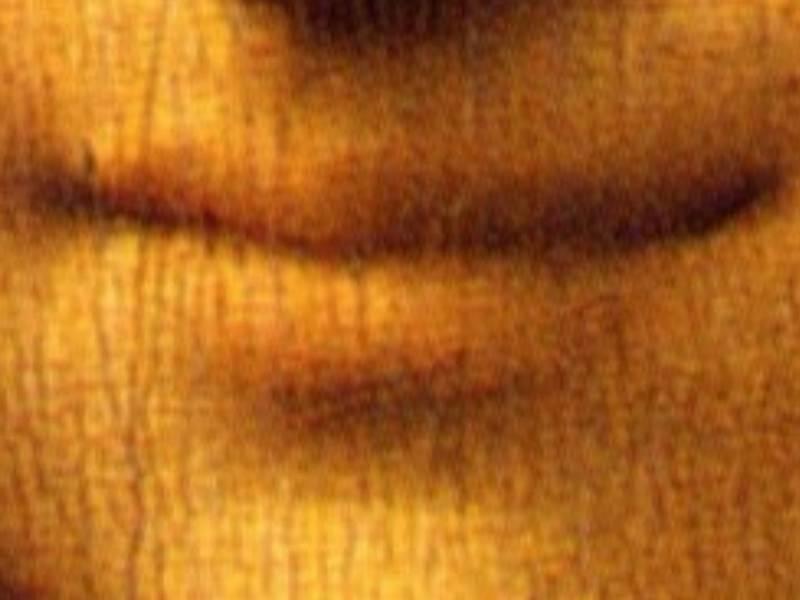 Privind doar buzele Mona Lisei, zambetul parcă dispare