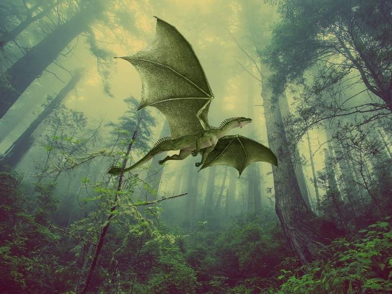 dragon zburand