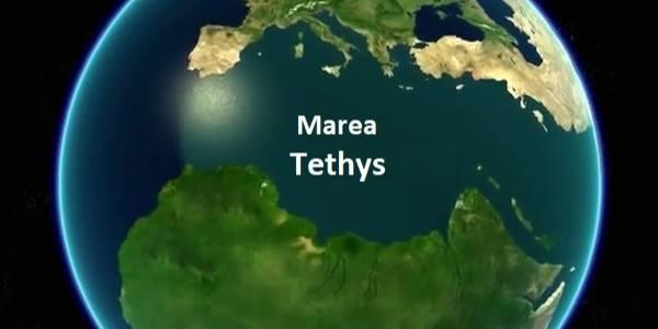 Marea Tethys acum 20 de milioane de ani