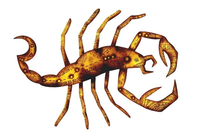 zodia scorpion - 2021