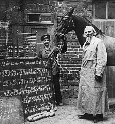 Calul matematician